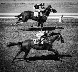 heckels.photography_bangkok_horseracing