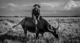 Buffalo Boy Portrait by Graeme Heckels Hoi An Travel Photography, Vietnam