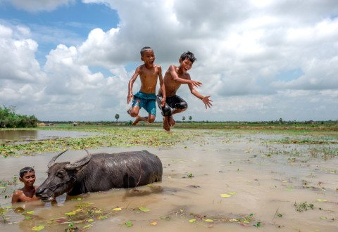 Boys jump off buffalo in Siem Reap by Graeme Heckels Travel Photography Cambodia