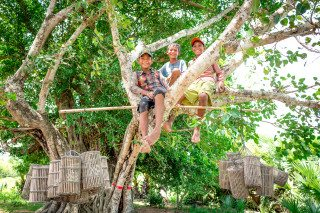 Boys play in tree by Graeme Heckels Travel Photography Cambodia
