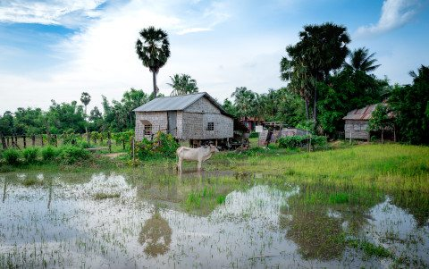 Siem Reap Landscape by Graeme Heckels Travel Photography