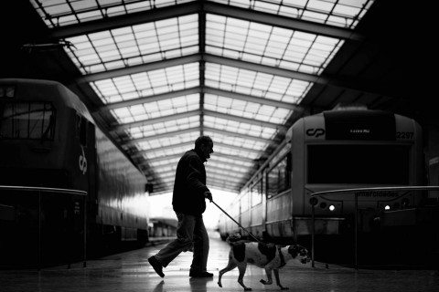 Walk The Dog by Graeme Heckels Travel & Street Photography Lisbon
