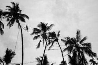 Graeme_Heckels_Sri Lanka Street Photography_Toddy_Tree Climbing