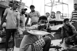 Graeme_Heckels_Sri Lanka Street Photography_Kalutara_Flying Fish_Portrait